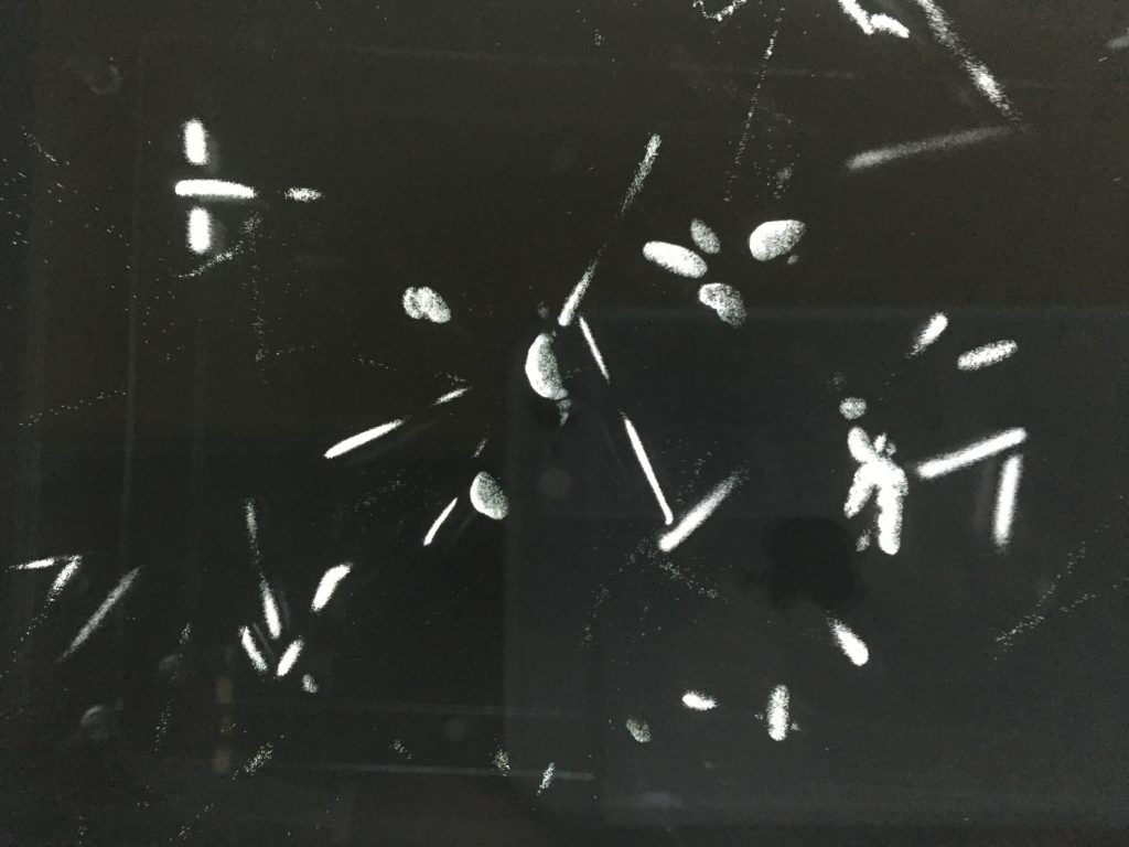 Alpha particles (helium nuclei) in cloud chamber